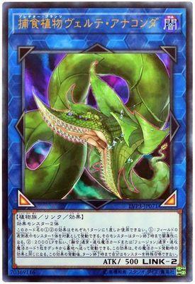 card100179390_1.jpg